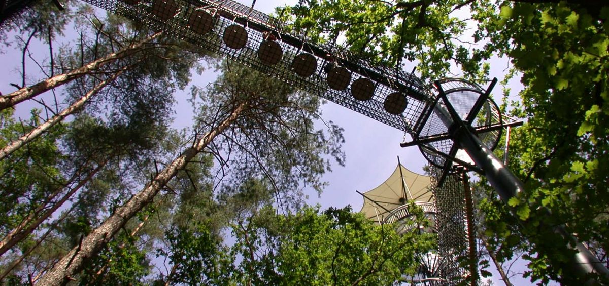 Ein Hauch von Abenteuer: Der Spaziergang über die Tellerbrücke. Für weniger Mutige gibt es eine Umgehung auf festen Holzplanken.