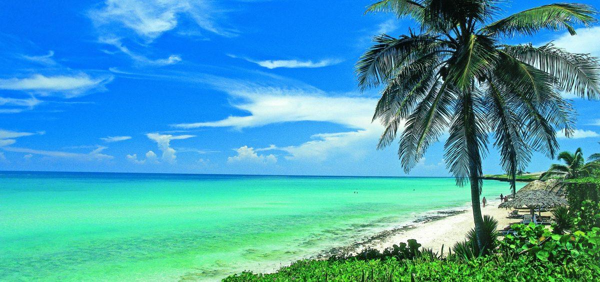Premiumkreuzfahrt zum Discounttarif: Mit ALDI ab 999 Euro durch die Karibik