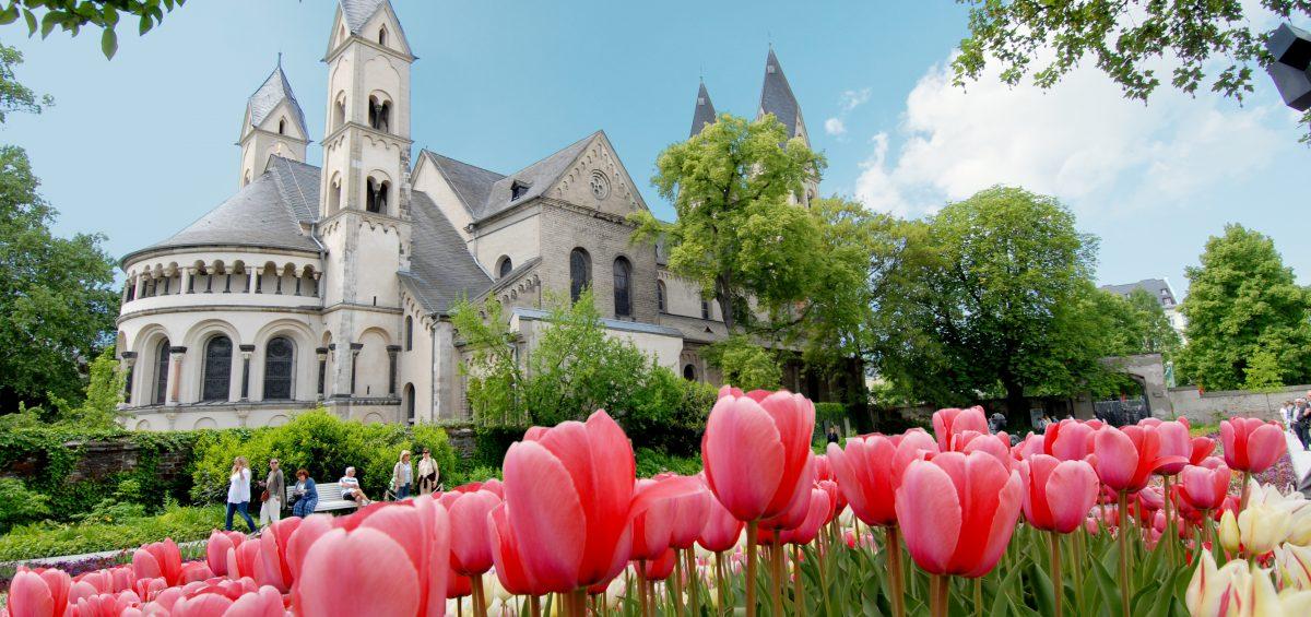 Tulpenpracht an der St. Kastor Kirche in Koblenz. Foto: Koblenz-Touristik/ideemedia