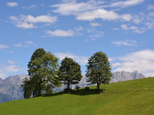 Fotokurse in den Kitzbüheler Alpen