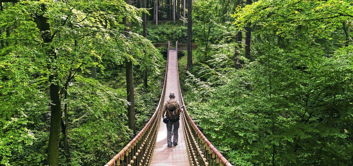 Abenteuer Hängebrücke bei Bingen