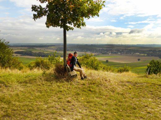Fern-sehen über Rheinhessen