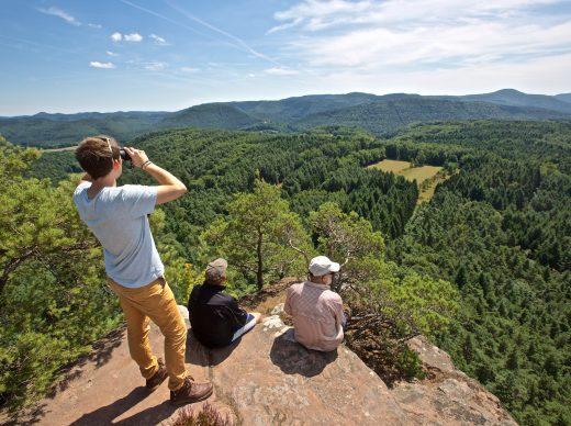 Wälder, Wiesen und Wein: Deutschlands größes Waldgebiet lockt mit 17 Premium-Wanderungen. Foto: Dahner Felsenland/Jaques Noll