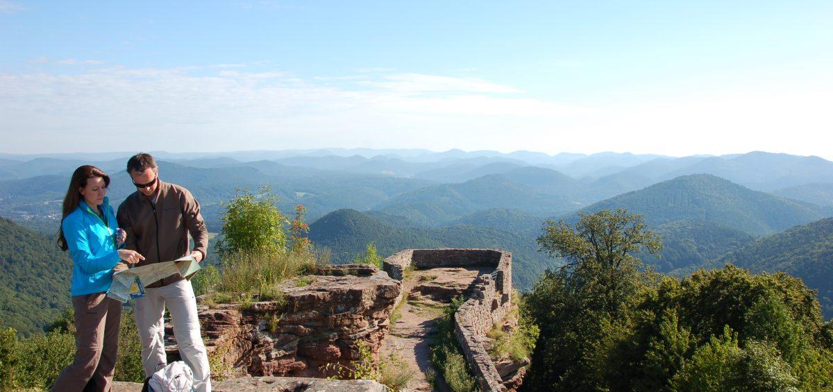 Das Dahner Felsenland von oben. Foto: Dahner Felsenland/Jaques Noll