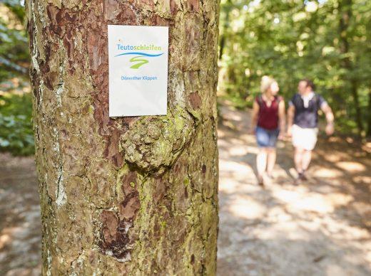 Bestens beschildert: Die Teutoschleifen. Foto: Tecklenburg Tourismus/Schubert
