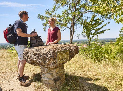 Weitblick vom Dornenstein. Foto: Tecklenburg Tourismus/Schubert